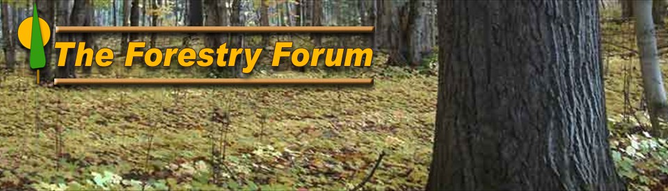 Welcome to the Forestry Forum