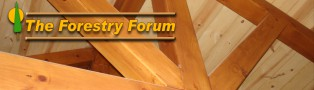 Learn about Timber Framing