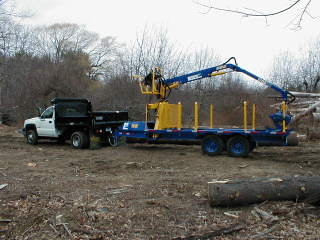 Grapple Trailer In Forestry And Logging