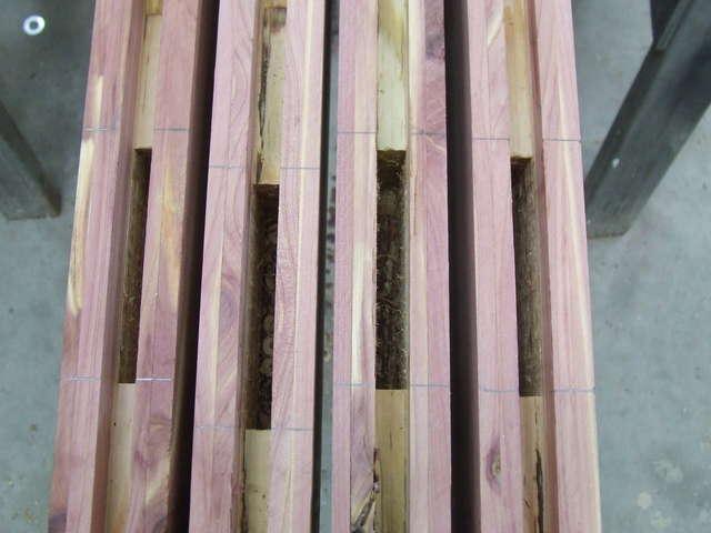 Cedar entry door in General Woodworking