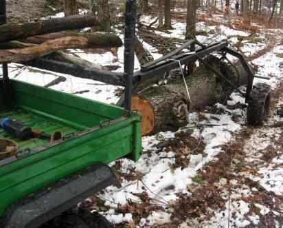 Skid Steer Logging in Forestry and Logging