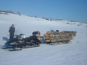 Utility Snowmobile In Forestry And Logging