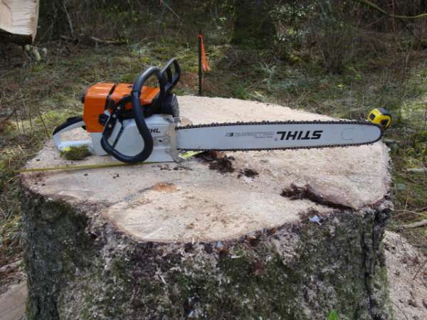 Ms 361 Wrap Handle In Chainsaws