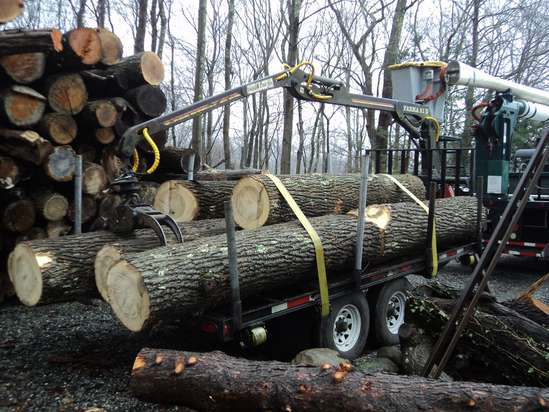 small log loading trailers what brand and model do you have