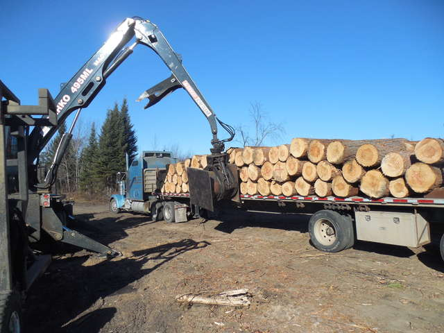 Price for logs  in Sawmills and Milling